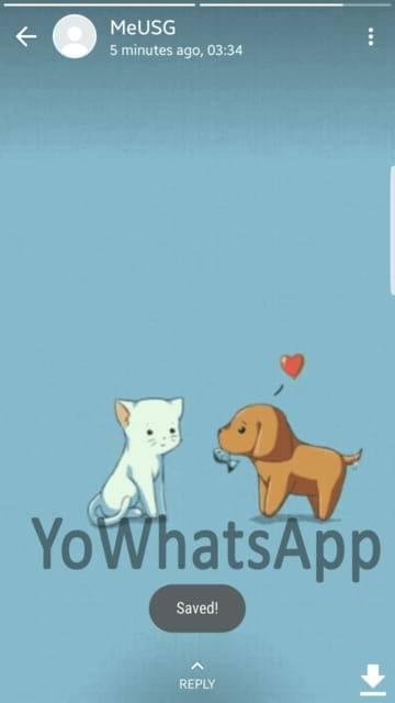 yowhatsapp atualizado 2020