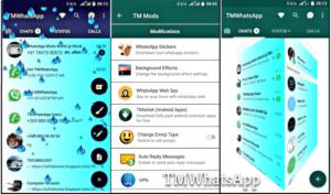 Baixar TM WhatsApp APK 2021 Atualizado   Download para Android
